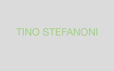 Tino Stefanoni artista